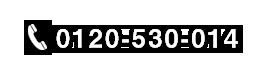 0120-530-014